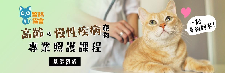 高齡及慢性疾病寵物專業照護課程(基礎初級)